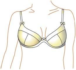 A Guide to Picking the Right Bra for Your Particular Shape and Style